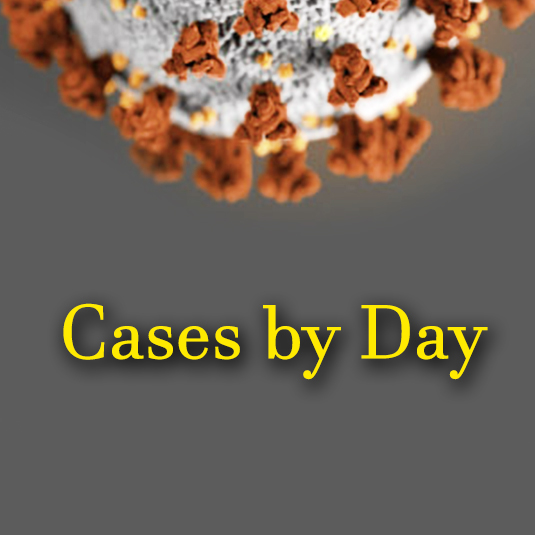 Cases by Day Graphic